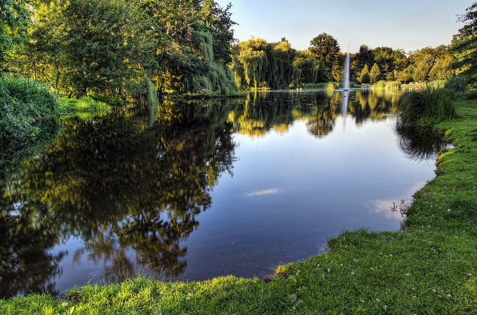 Glassy Pond in Stromovka